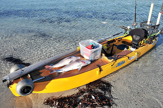 Decked Outfitter KAYAK FISHING DOWN UNDER